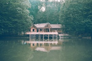 Wood House on the Forest