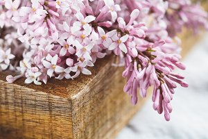 Close-up of lilac flowers in a wooden dox. Wedding concept.
