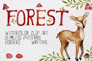 Forest watercolor set