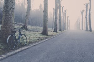 Vintage bike in a foggy park