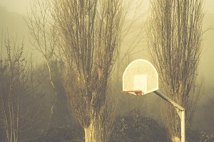 Basketball court and trees in fog