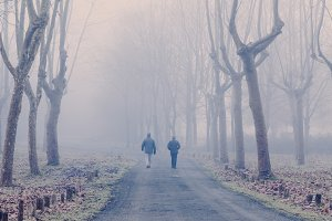 People walking in a foggy road