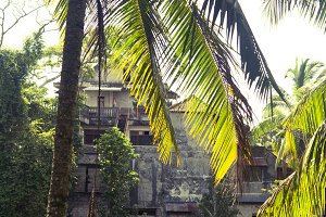 Stone House Behind Sunlit Palmtrees
