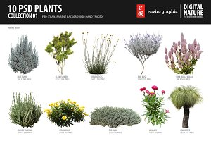 10 PSD Plants Collection 1