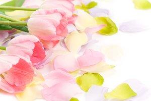 Easter Tulips & Silk Floral Petals