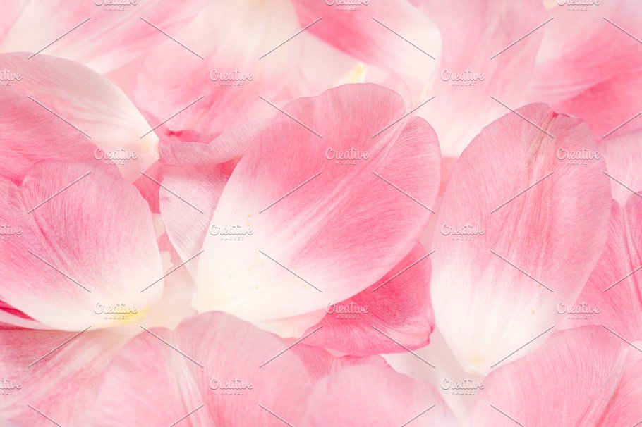 pink tulip petals background abstract photos creative market