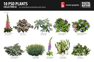 10 PSD Plants Collection 2