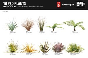 10 PSD Plants Collection 3
