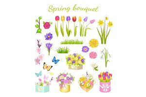 Concept of Beautiful Spring Bouquet Color Flowers