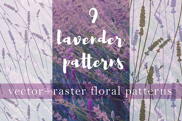 9 Realistic Lavender Patterns in Patterns - product preview 5