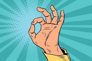 OK gesture signal man hand okay