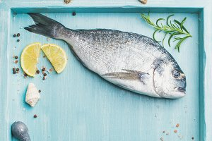 Fresh Sea bream raw uncooked fish