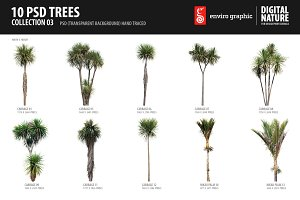 10 PSD Trees Collection 3
