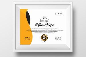Elegant Certificate & Diploma