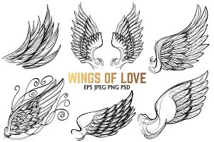 Wings of love set