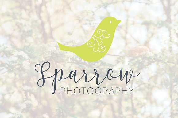 Bird Logo Simple Swirl