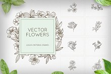 Flowers - logos, patterns, frames