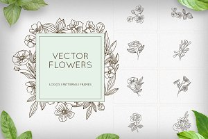 Flowers - logos, patterns, frames