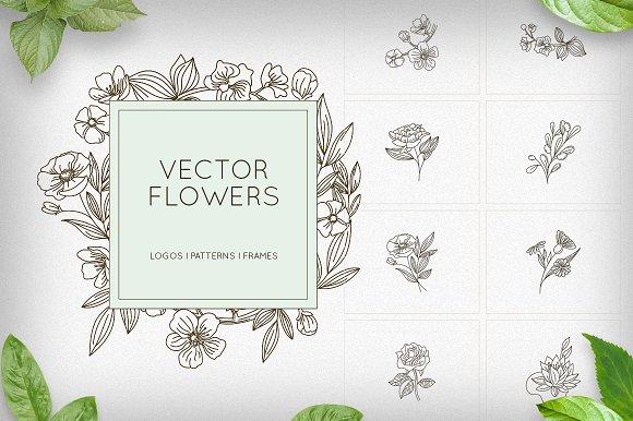 Flowers Logos Patterns Frames