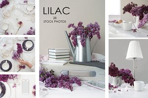 FLOWERS OF LILAC. 28 STOCK PHOTOS.