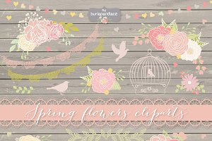 Vector Spring flower clipart