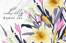 Lilly flower collection .
