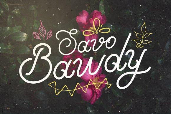 Savo Bawdy Typeface