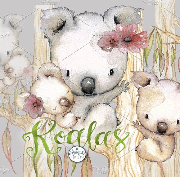 Koala Clipart Watercolor