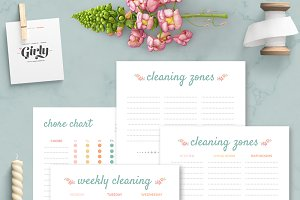 Cleaning Planner, Home binder