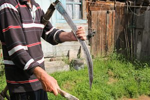 Man sharpening a scythe before mowing