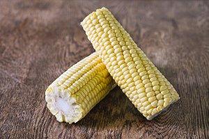 Fresh corn cob