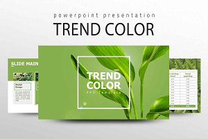 TREND COLOR Presentation
