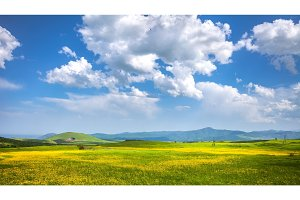meadow, hills and blue sky