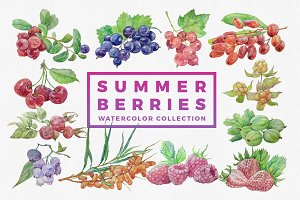 Summer berries. Watercolor bundle.