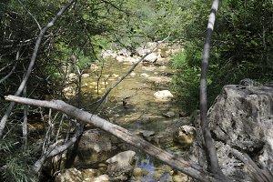 Campdevanol River