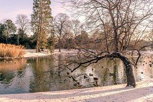 Vienna city park