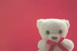 Teddy Bear on Red
