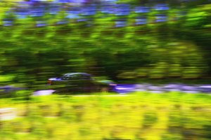 Car at high speed in the forest