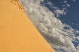 Wind in yellow dunes