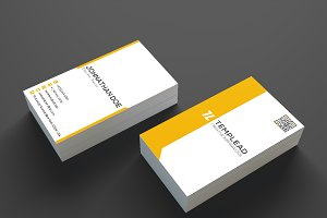 Corporate Business Card SE0208