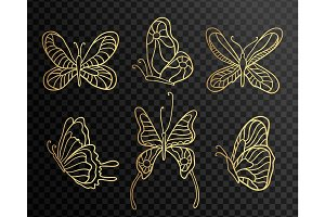 Set of butterflies. Butterfly icons isolated on transparent background. Gold Lace butterfly on black background.