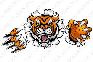Tiger Holding Basketball Ball Breaking Background