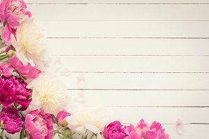 Vintage background with peonies