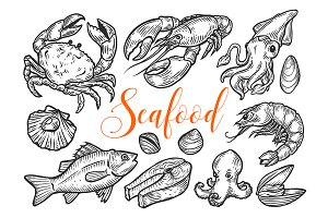Seafood marine hand drawn set