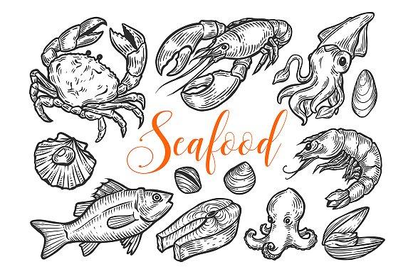 Seafood Marine Hand Drawn Set