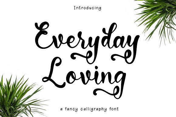 Everyday Loving Font Script Fonts Creative Market