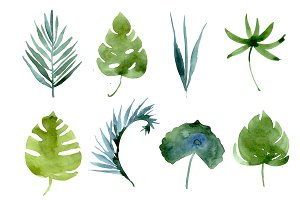 watercolor tropical leaves, patterns