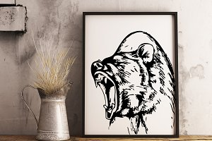 Hand drawn wild Bear