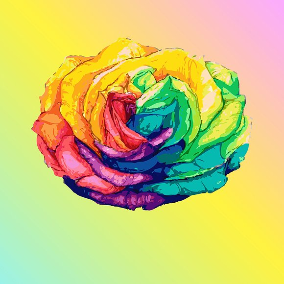 Hand Drawn Rainbow Rose