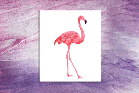 Hand Drawn Flamingo